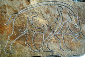 celtic-boar